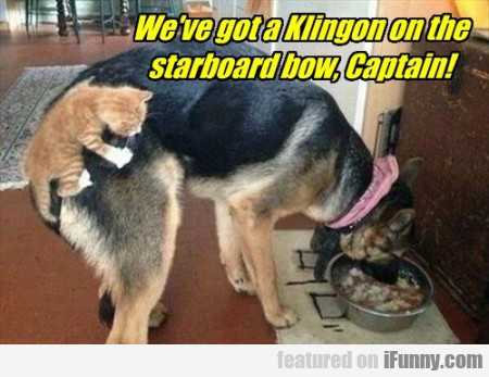 We've Got A Klingon On The Starboard Bow...