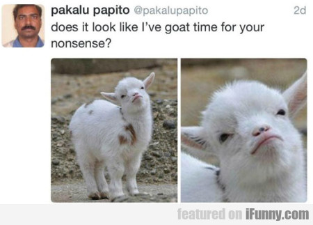 Does It Look Like I've Goat Time For Your Nonsense