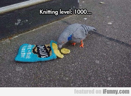Knitting Level 1000...