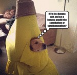 If I'm In A Banana Suit, And Eat A Banana...