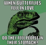 When Butterflies Fall In Love..