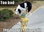 Too Bad The Floor Is Lava Again
