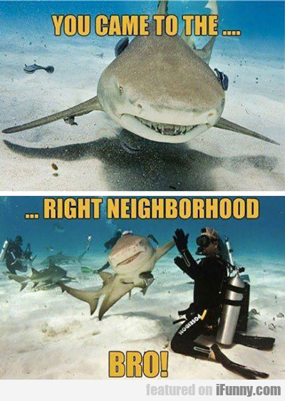 You Came To The Right Neighborhood...