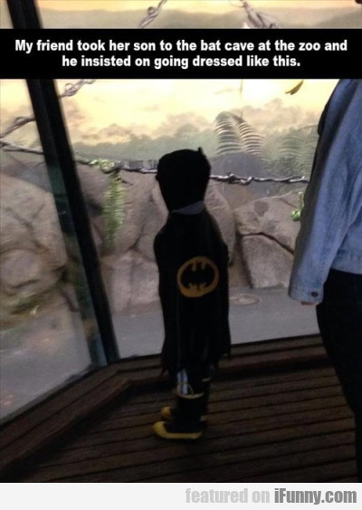 My Friend Her Son To The Bat Cave.