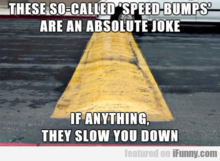 These So Called Speed Bumps...