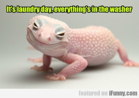 it's laundry day everything's in the washer
