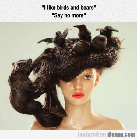 I Like Birds And Bears