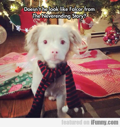 Doesnt He Look Like Falcor From