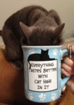 Everything Tastes Better With Cat