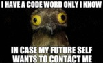 I Have A Code Word Only I Know