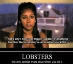 That's Why I Don't Eat Friggin Lobster...