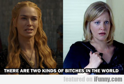 there are two kinds of bitches...