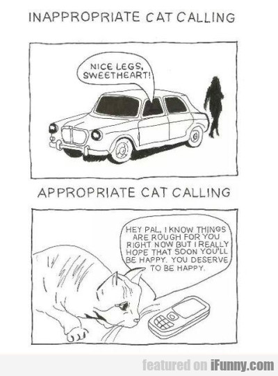 Inapproporiate Cat Calling