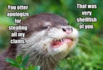 You Otter Apologize For Stealing All My Clams.