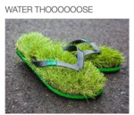 Water Thooooose...