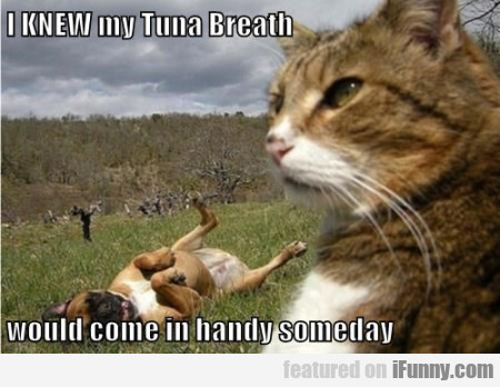I Knew My Tuna Breath