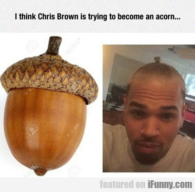 I Think Chris Brown...