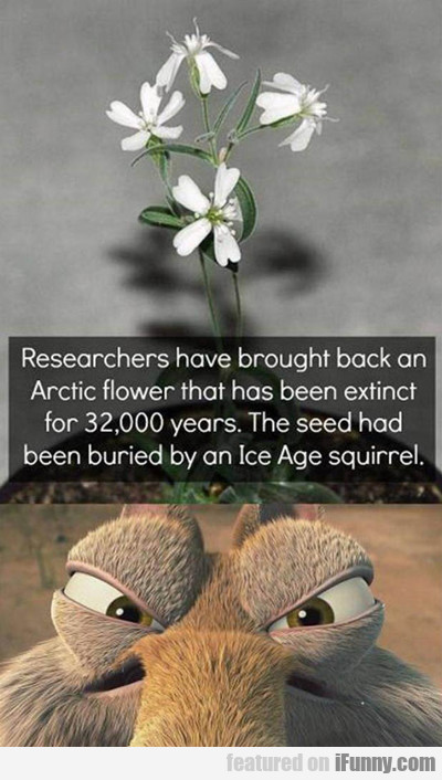 researchers have brought back...