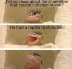 Did You Hear About The Chameleon...