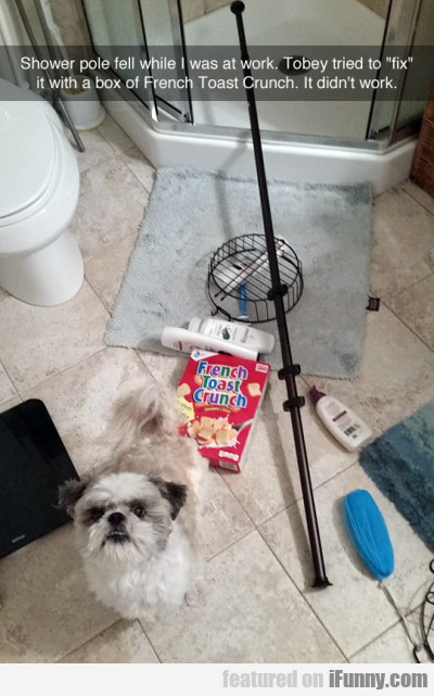 Shower pole fell while I was at work...