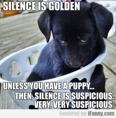 Silence Is Golden. Unless You Have A Puppy...