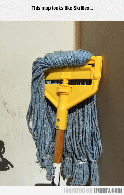 This Mop Looks Like Skrillex...