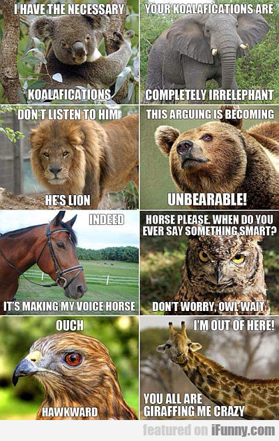 Animal Grammar