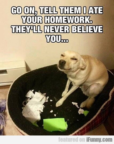 Go On, Tell Them I Ate Your Homework
