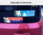 Seems Legit, I'd Vote For Him...