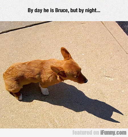 By Day He Is Bruce, But By Night...