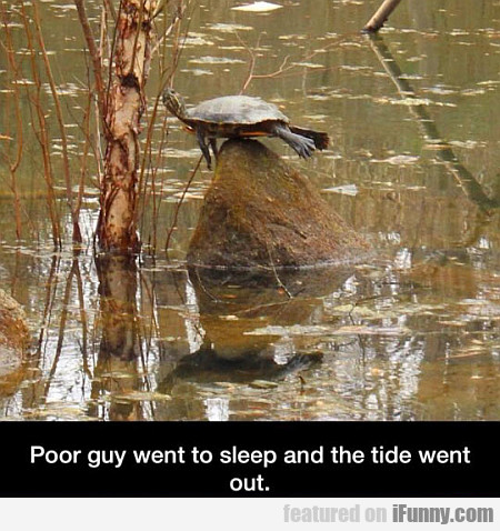 Poor Guy Went To Sleep And The Tide Went Out