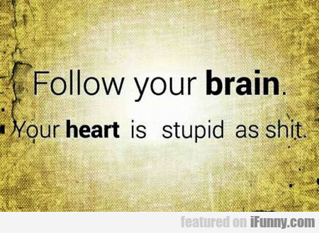 Follow Your Brain...