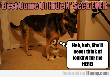 Best Game Of Hide N' Seek Ever