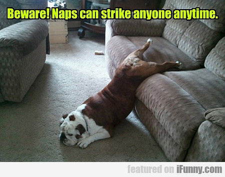Beware, Naps Can Strike Anyone Anytime