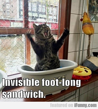 Invisible Foot-long Sandwich