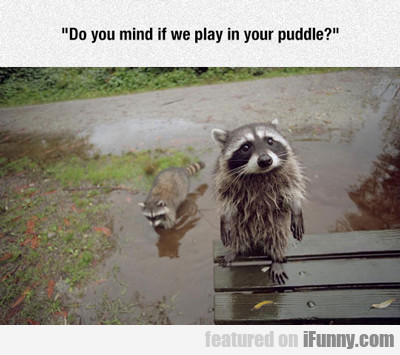 Do You Mind If We Play In Your Puddle...