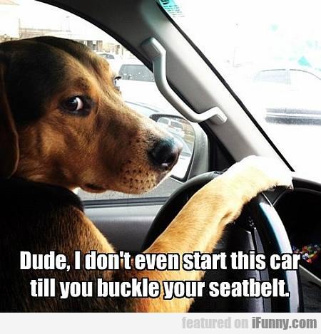 I Don't Even Start This Car Till You Buckle...