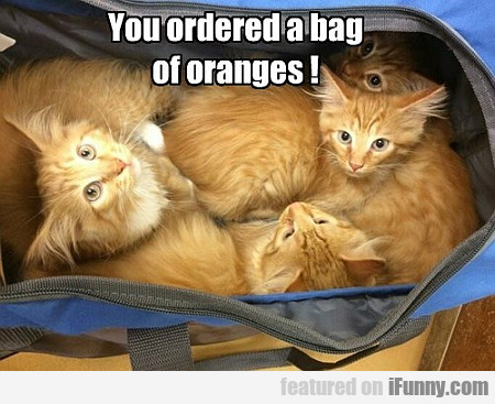 You Ordered A Bag Of Oranges...