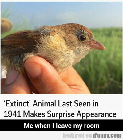 Extinct Animal Last Seen In 1941...