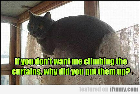 If You Don't Want Me Climbing