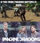 If You Think Training Raptors Is Hard...