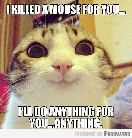 I Killed A Mouse For You