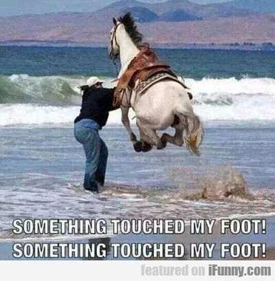 Something Touched My Foot....