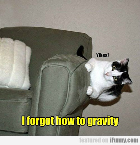 I Forgot How To Gravity