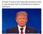 Donald Trump's Hair Looks Like Someone...
