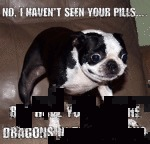 No, I Haven't Seen Your Pills