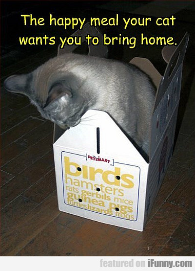 the happy meal your cat wants
