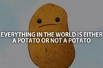 Everything In The World Is Either A Potato Or...