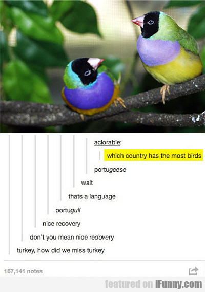 Which Country Has The Most Birds?