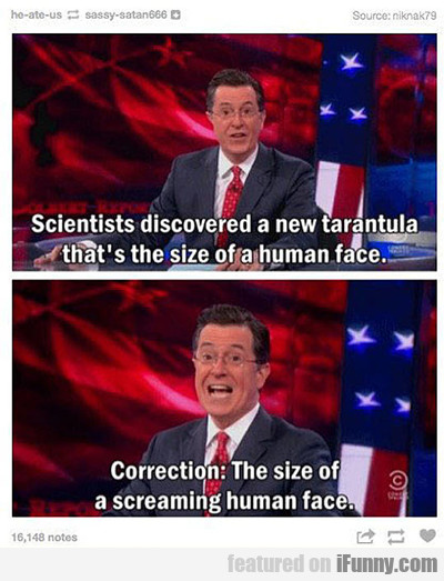 Scientists Discovered A New Tarantula...
